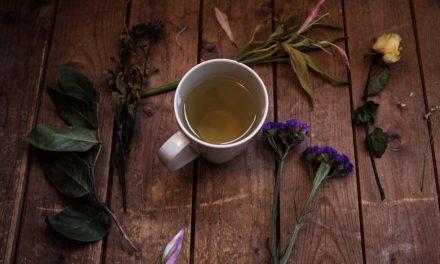 Αρωματικά Φαρμακευτικά Φυτά και βότανα της Ηπείρου