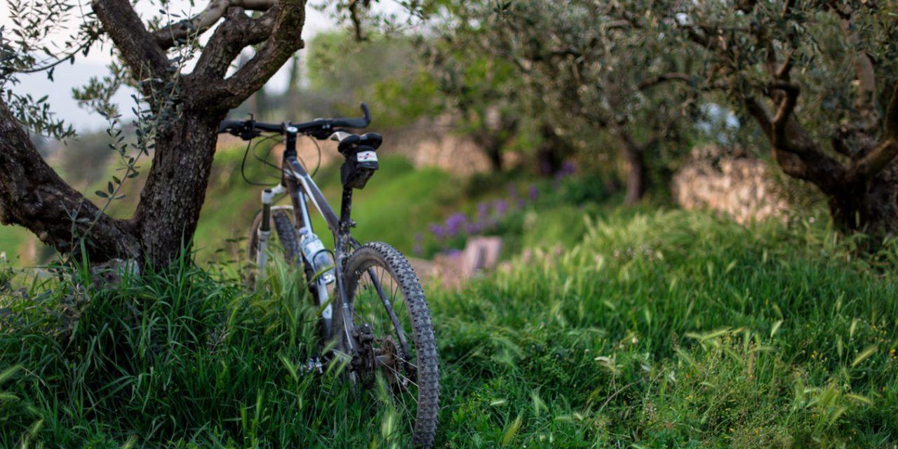 Τι είναι το Bike Friendly Hotels