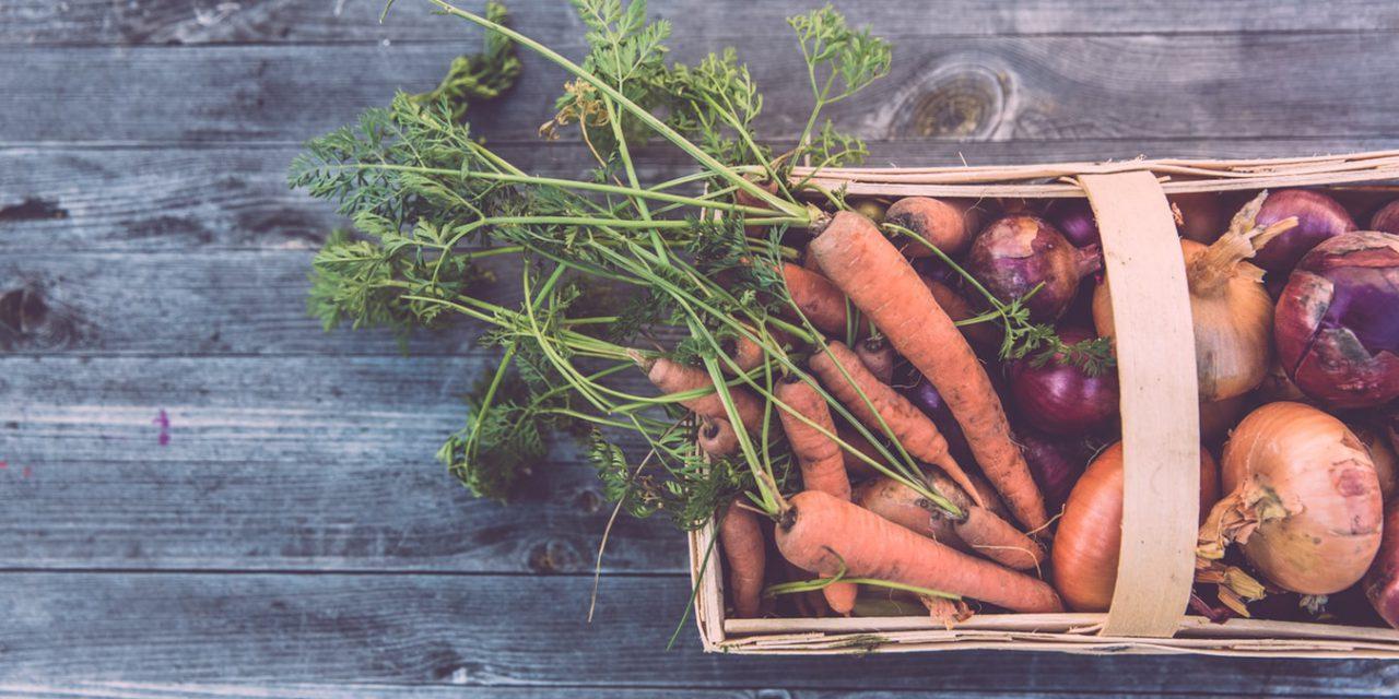 Τι σπέρνουμε τον Δεκέμβριο στη γλάστρα και τον κήπο
