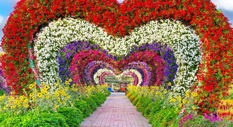 """""""Miracle Garden"""": ο κήπος των ονείρων σου"""