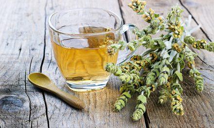 Τσάι του βουνού: 6 σπουδαία είδη που φυτρώνουν στην Ελλάδα