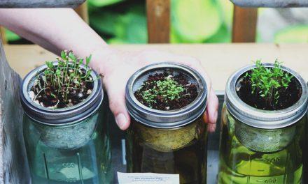 Πώς να καλλιεργήσεις βότανα στο νερό