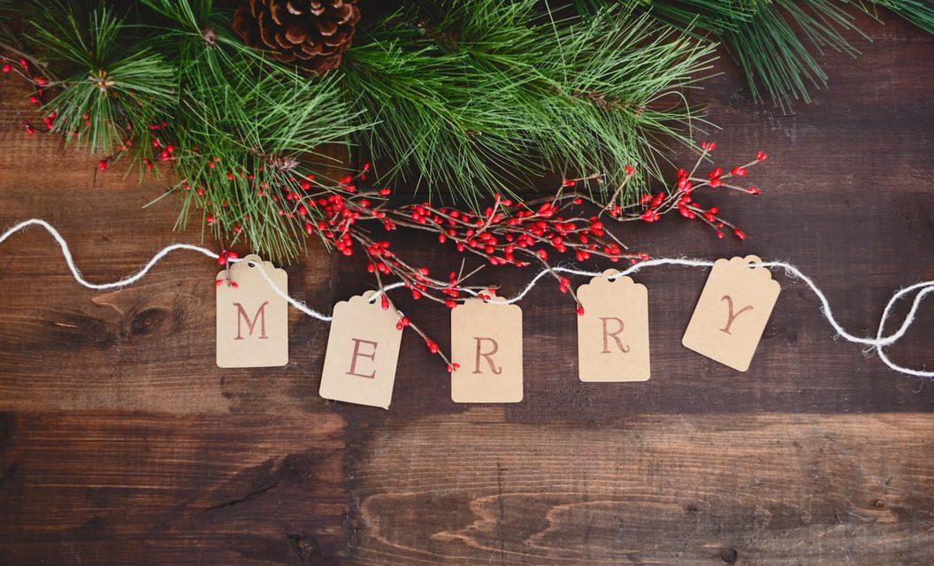 Κάνε το δεντρολίβανο σου δέντρο για τα Χριστούγεννα