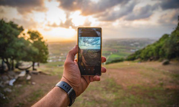 Εφαρμογή στο κινητό σου λέει ποιο αρωματικό φυτό να βάλεις στο χωράφι σου