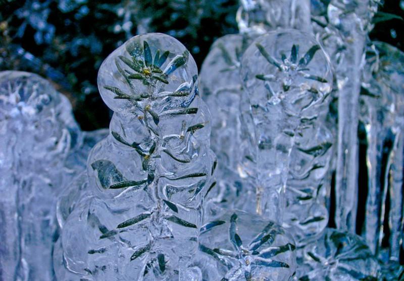 Η παγωμένη φύση είναι μαγική
