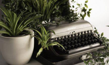 3 ανθεκτικά βότανα που μεγαλώνουν μόνα τους και μια ιστορία