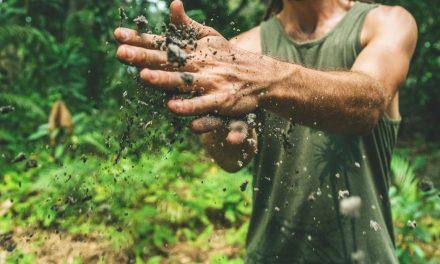 Αγρότης και Τεχνολογία e-νώνονται