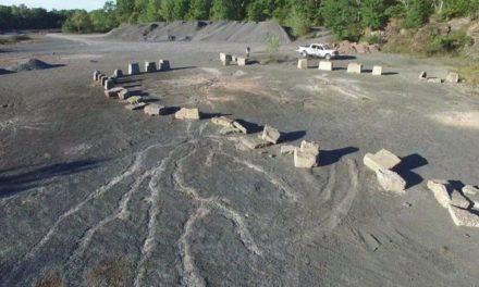 Απολιθώματα από το αρχαιότερο δάσος στη Γη, βρέθηκαν στη Νέα Υόρκη