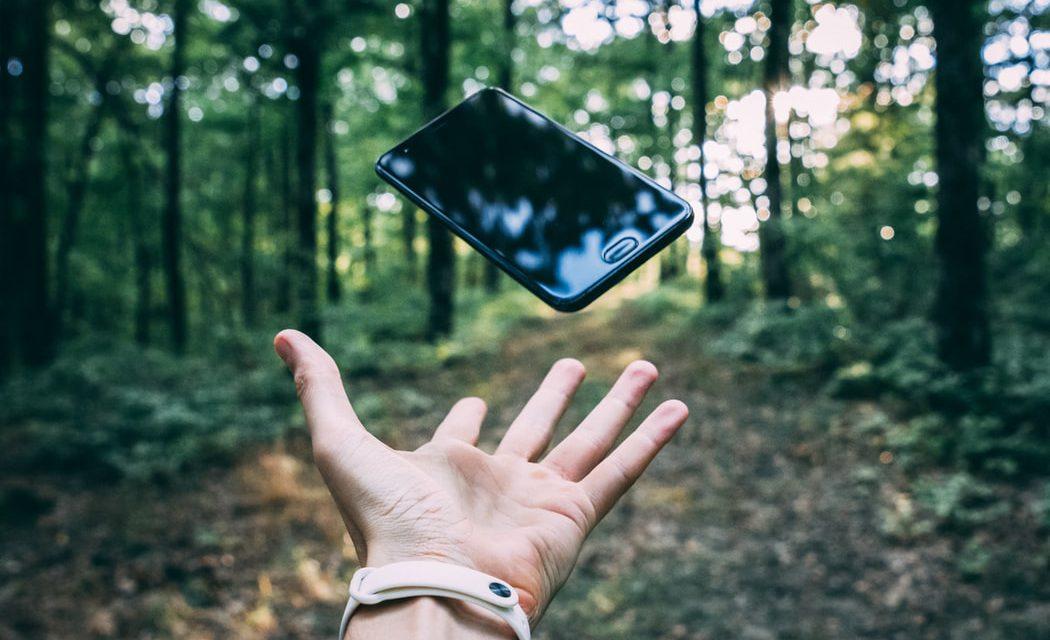 Εφαρμογή για κινητά δίνει πληροφορίες για την καλλιέργεια αρωματικών φυτών