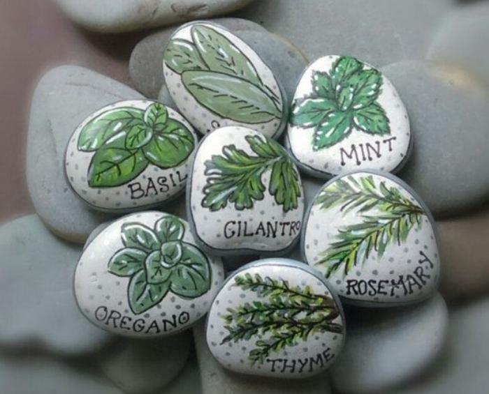 Βότσαλα, πέτρες και κοχύλια. Ζωγράφισε πάνω σε πέτρα με φωτεινά χρώματα και σχέδια το όνομα του φυτού. Είναι κάτι πολύ δημιουργικό και καλλιτεχνικό. Δε νομίζεις;