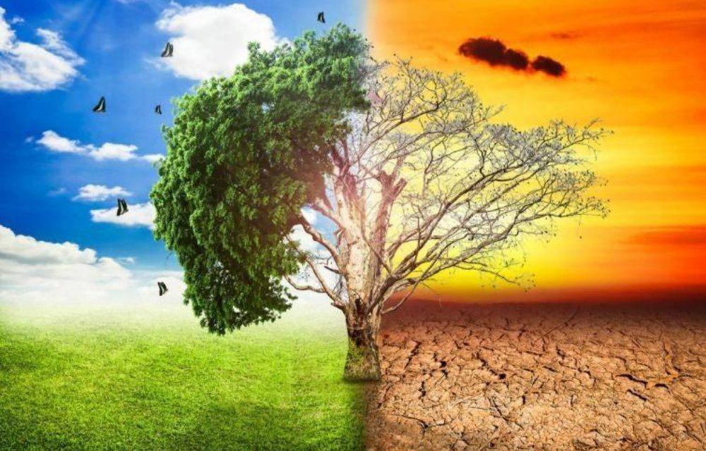 Το 40% της Ελλάδας θα γίνει έρημος αν δεν προσαρμοστεί στην κλιματική αλλαγή