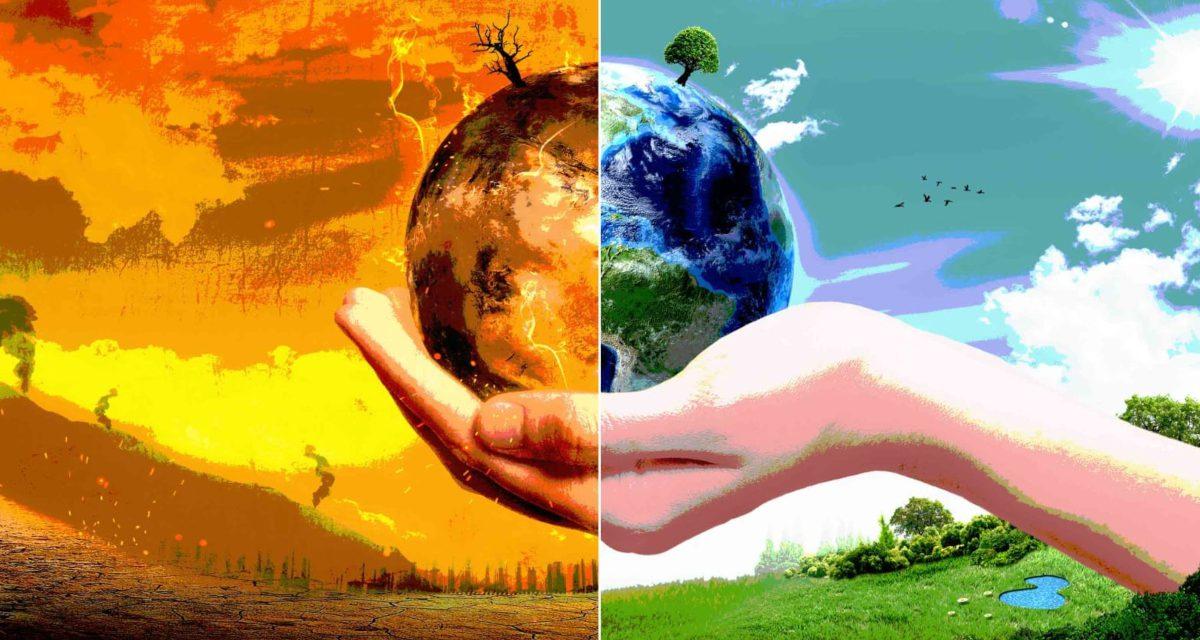 Κλιματική αλλαγή: Το 40% των φυτών της Γης είναι σπάνια και ευάλωτα