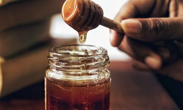 Μέλι βελανιδιάς, το θαύμα της ελληνικής φύσης με τα περισσότερα αντιοξειδωτικά