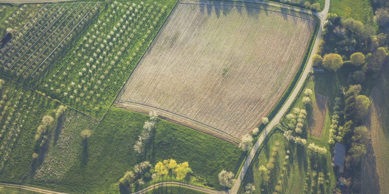 SmartAgriHubs: Η Διαδικτυακή Πύλη Αγροτικής Καινοτομίας, διαθέσιμη για όλους