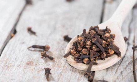 Γαρίφαλο: Ένα δημοφιλές μπαχαρικό με έντονο άρωμα