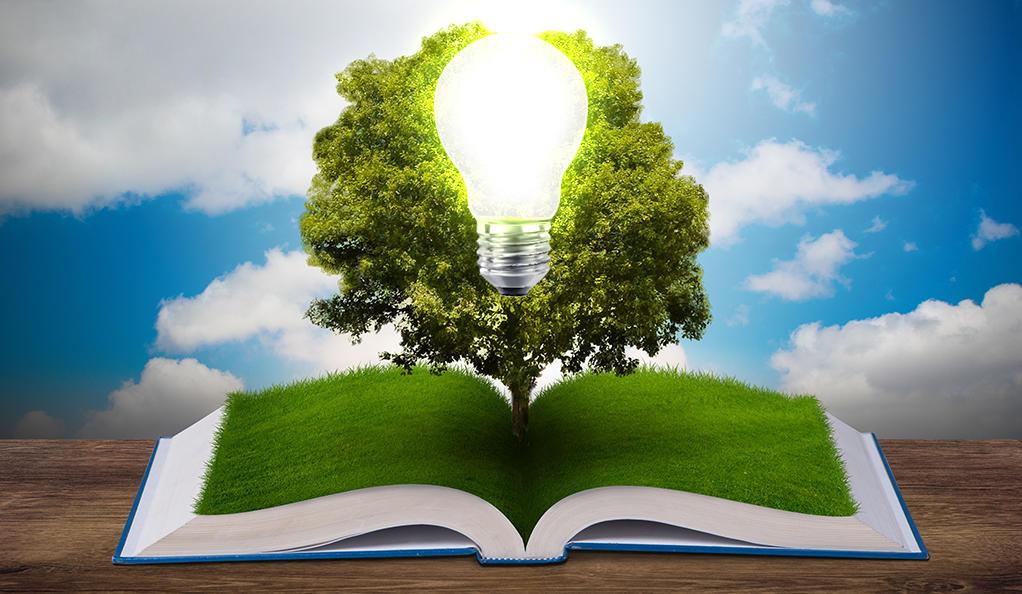 12 περιβαλλοντικές οργανώσεις για νέο νόμο-πλαίσιο για το περιβάλλον
