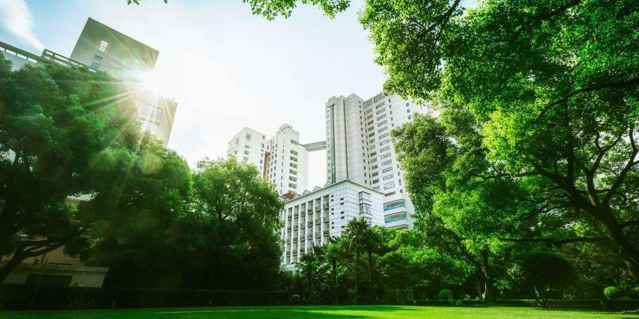Η ΚΕΔΕ δίνει προτάσεις για πιο πράσινες πόλεις