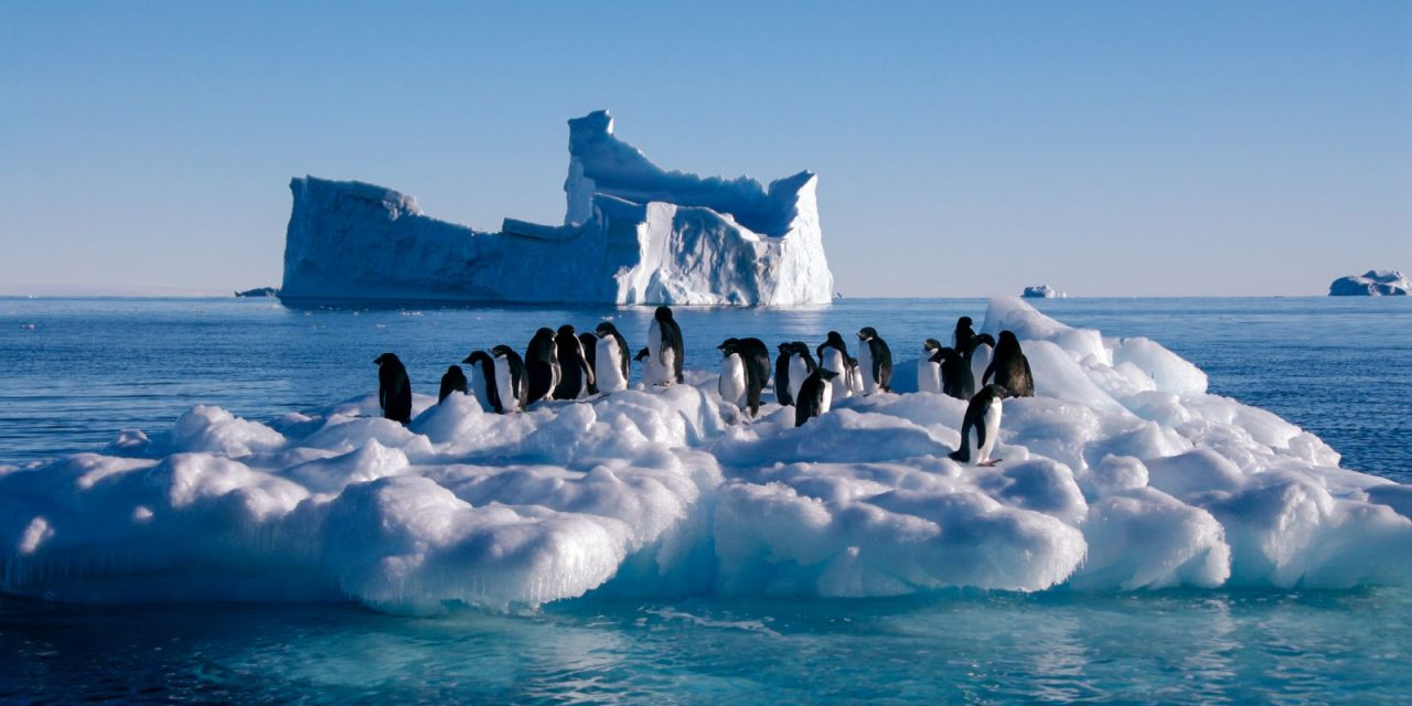 Ανταρκτική: Θερμοκρασία ρεκόρ για πρώτη φορά στα χρονικά