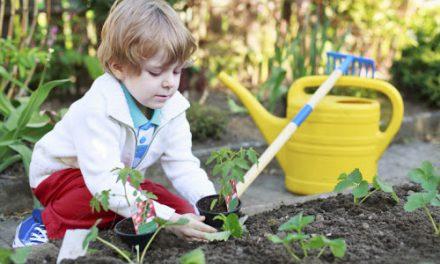 Μαθησιακός κήπος για παιδιά: Πώς να τον φτιάξεις