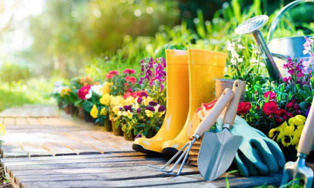 Η κηπουρική βελτιώνει την υγεία και την ευεξία – Τι αποκαλύπτει η έρευνα της Δρ de Bell