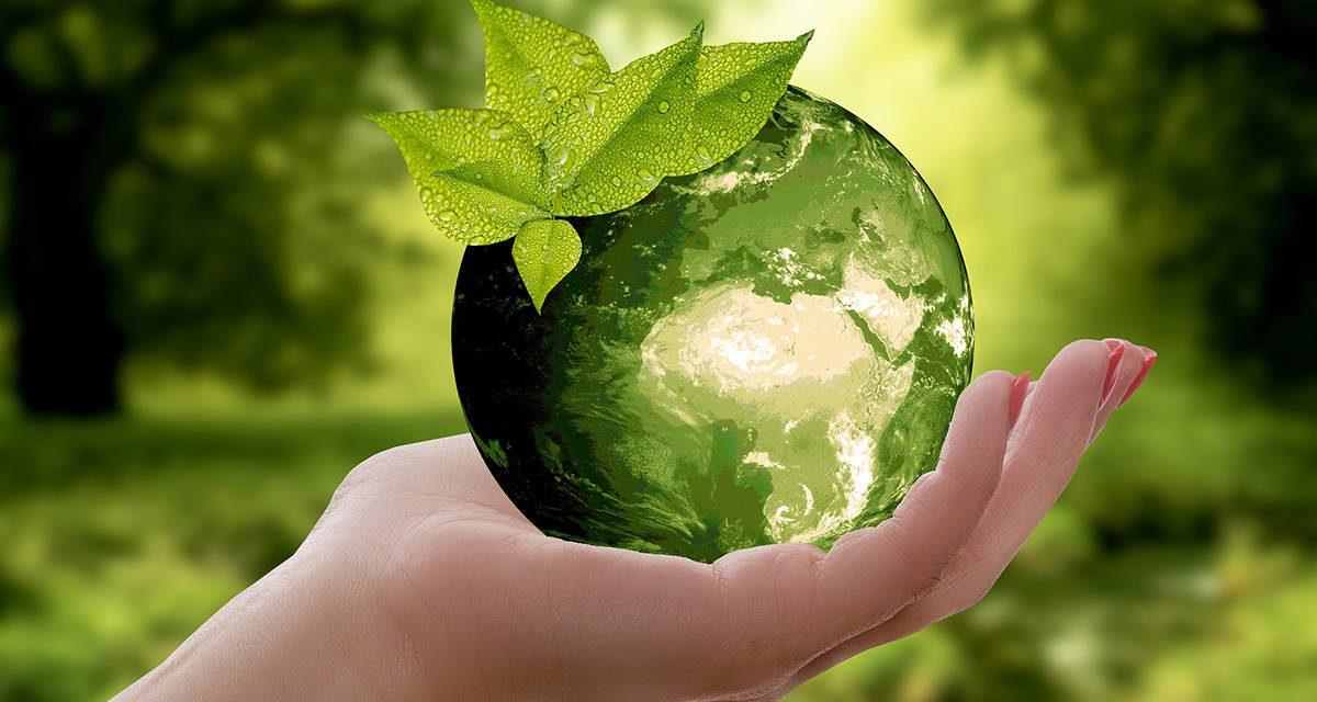 Νέα στρατηγική για τη βιοποικιλότητα: Επαναφορά της φύσης στη ζωή μας – Μέρος 2ο