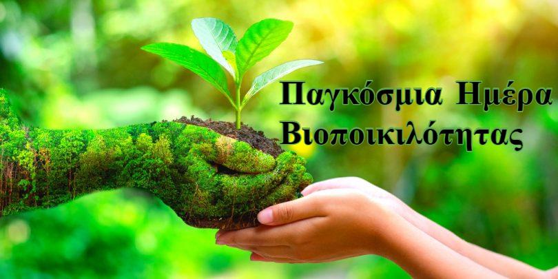 Σαν σήμερα 22 Μαΐου: Παγκόσμια Ημέρα Βιοποικιλότητας