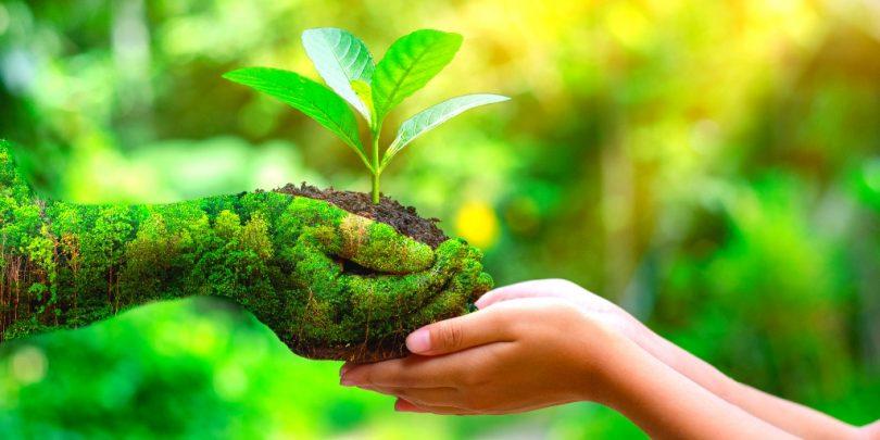 Νέα στρατηγική για τη βιοποικιλότητα: Επαναφορά της φύσης στη ζωή μας – Μέρος 1ο