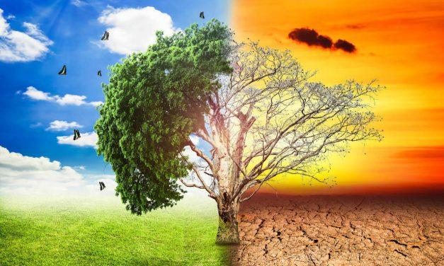 Σαν σήμερα 17 Ιουνίου: Παγκόσμια Ημέρα για την Ερημοποίηση και την Ξηρασία