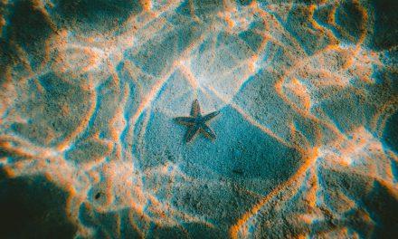 Ελληνικός τουρισμός: Σε εφαρμογή το πρόγραμμα «Τουρισμός για όλους»