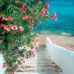 Η Ελλάδα είναι η πιο όμορφη χώρα που έχει απομείνει ~ Βιρτζίνια Γουλφ