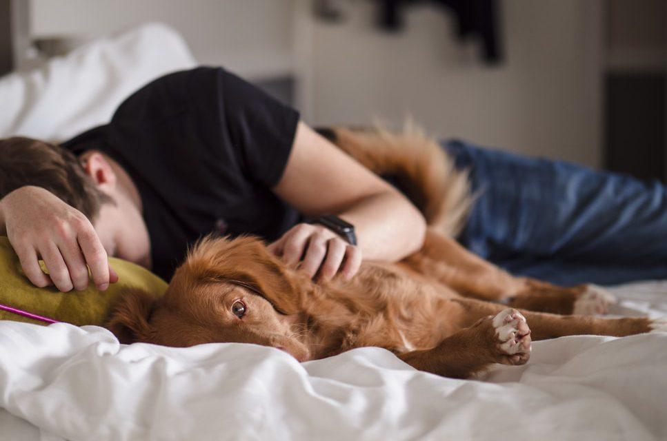 Ποια είναι η καλύτερη θέση ύπνου όταν πονάς κάπου
