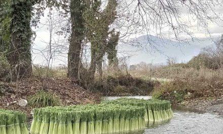 Ο ποταμός των πράσων στην Πέλλα
