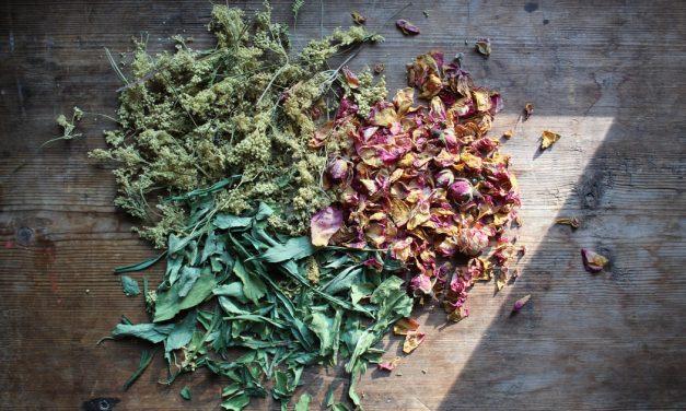 11 δροσιστικά βότανα που βοηθούν να αντέξεις τη ζέστη